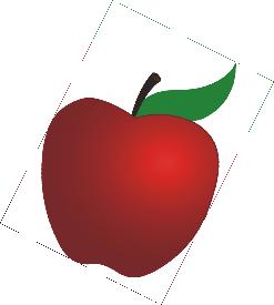 Maroon Apple Agency